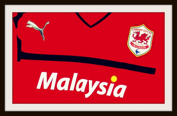 Cardiff City, Red, Puma, Home, Kit, Bluebirds